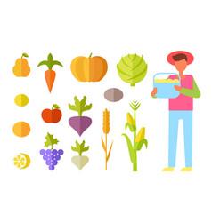 Harvest farmer vegetables set vector