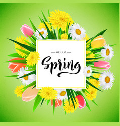 hello spring banner background template with vector image