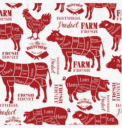 Meat cuts diagrams for butcher shop animal vector