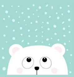 polar white little small bear cub head face vector image