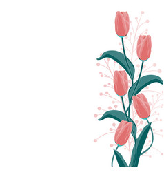 red tulip and herbs elegant card vector image