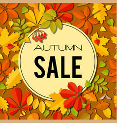 sale banner with bright autumn leaves vector image