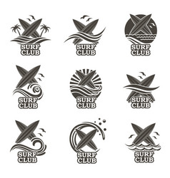 Set surfing emblems vector