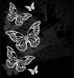 border with chalk butterflies vector image vector image