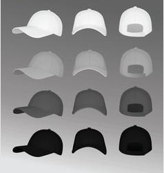 Baseball caps vector