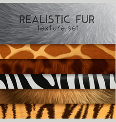 Fur texture horizontal elements vector
