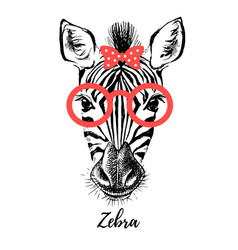 hand drawn sketch zebra hipster head isolated vector image