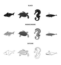 isolated object of sea and animal symbol vector image