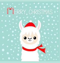 Merry christmas llama alpaca baface santa vector