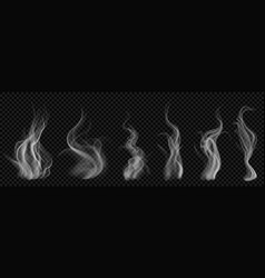 set of translucent white smoke vector image