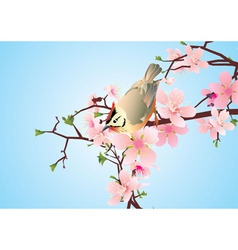 bird on the blossoming cherry detailed vector vector image
