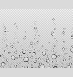 Bubbles underwater texture soda bubble flow vector