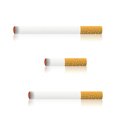 Burning cigarettes vector