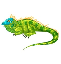 Green iguana crawling alone vector image