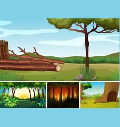 set different outdoor nature scene vector image