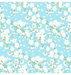 white spring tree flowers vector image