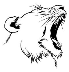 Lioness Head vector image vector image