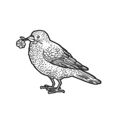 canary with a camomile in a beak sketch vector image