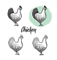 Chicken logotypes set Hen meat and eggs vintage vector