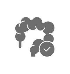 Healthy intestines colon grey icon isolated vector