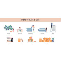 Infographic showing steps winemaking flat vector