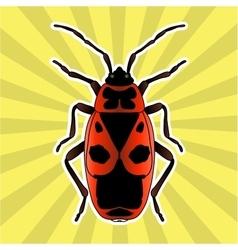 Insect anatomy Sticker Pyrrhocoris apterus vector image