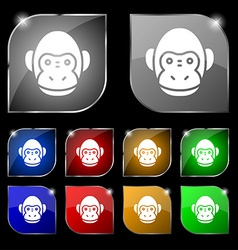 Monkey icon sign Set of ten colorful buttons with vector