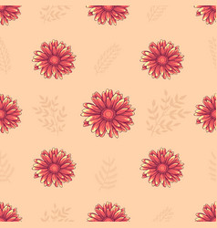 Seamless pattern with pink daisy flowers vector