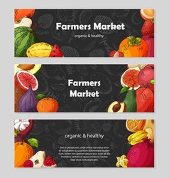 Set of organic fruits cards hand drawn sketch vector