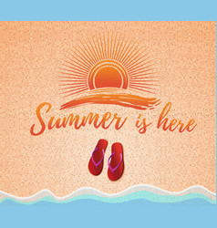 summer concept design vector image