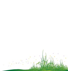 beauty grass with butterfly vector image