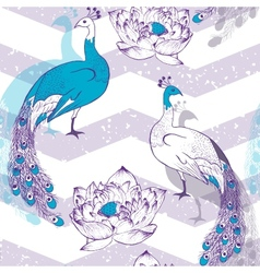 Seamless pattern with peacock birds in vector image vector image