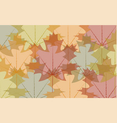 background transparent autumn leaves vector image