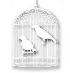 Caged birds cutout vector