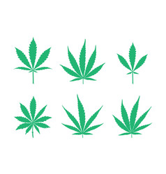 Cannabis leaves set vector