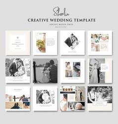 creative wedding social media template vector image