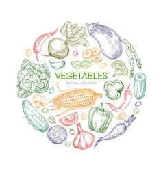 fresh vegetables round banner design vector image