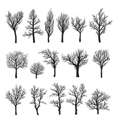Trees without leaves black graphic silhouette icon vector