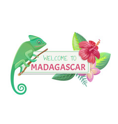 Welcome to madagascar title vector