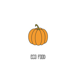 pumpkin hand drawn vector image