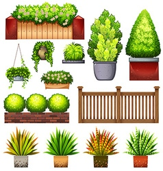 Set of different plants vector image