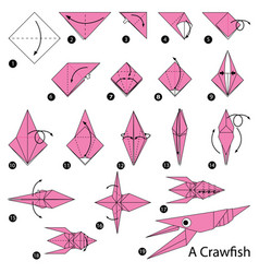 Step instructions how to make origami a craw fish vector