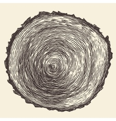 Tree rings engraved annual saw vector