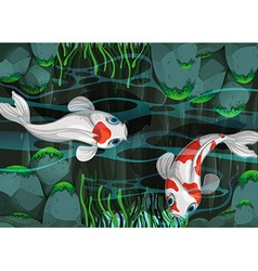 Two fish swimming in the pond vector image