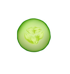 cucumber isolated slice fresh icon food green vector image vector image
