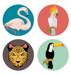 tropical summer animals icon vector image