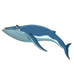 Big blue baleen whale vector