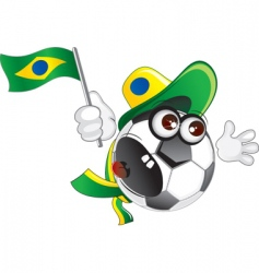 Brazilian vector