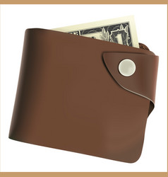 Brown wallet with money vector