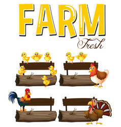 Farm animals and signs vector